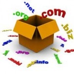 Check Domain or Website Age